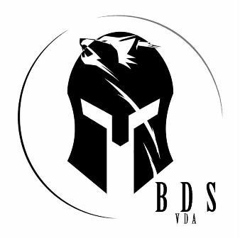 Logo BDS VDA.jpg
